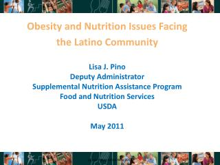 Lisa J. Pino Deputy Administrator Supplemental Nutrition Assistance Program Food and Nutrition Services USDA May 2011