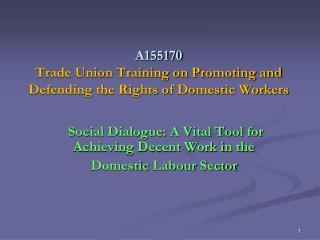 A155170 Trade Union Training on Promoting and Defending the Rights of Domestic Workers
