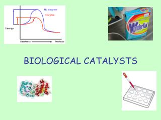 BIOLOGICAL CATALYSTS