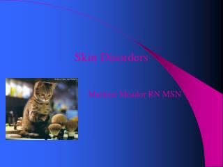 Skin Disorders Marlene Meador RN MSN