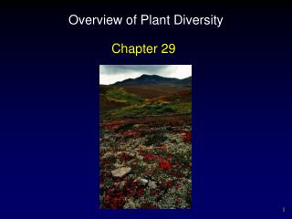 Overview of Plant Diversity