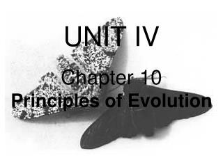 UNIT IV Chapter 10                Principles of Evolution