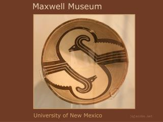 Maxwell Museum