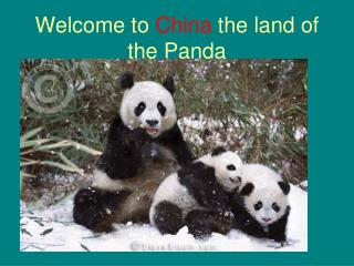 Welcome to  China  the land of the Panda