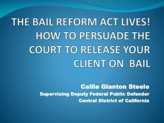 THE BAIL REFORM ACT LIVES! HOW TO PERSUADE THE COURT TO RELEASE YOUR CLIENT ON  BAIL