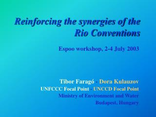 Reinforcing the synergies of the Rio Conventions