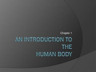 An Introduction to the Human Body