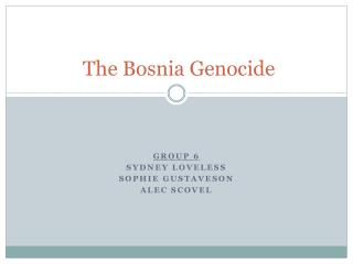 The Bosnia Genocide
