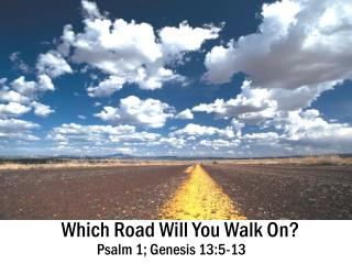 Which Road Will You Walk On?