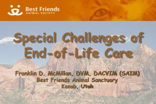 Special Challenges of End-of-Life Care