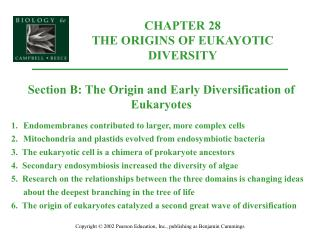 CHAPTER 28 THE ORIGINS OF EUKAYOTIC DIVERSITY