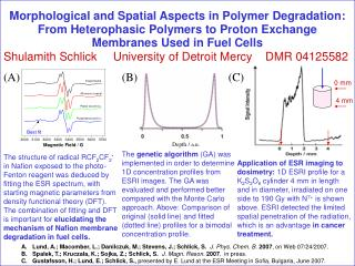 Morphological and Spatial Aspects in Polymer Degradation: From Heterophasic Polymers to Proton Exchange Membranes Used i