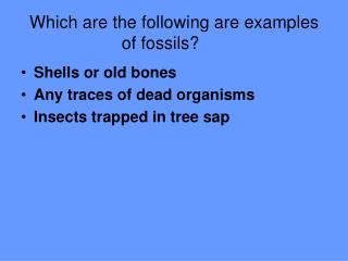 Which are the following are examples of fossils?
