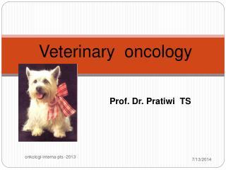 Prof. Dr. Pratiwi TS