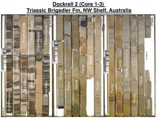 Dockrell 2 (Core 1-3)  Triassic Brigadier Fm, NW Shelf, Australia