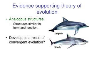Evidence supporting theory of evolution