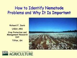 How to Identify Nematode Problems and Why It Is Important