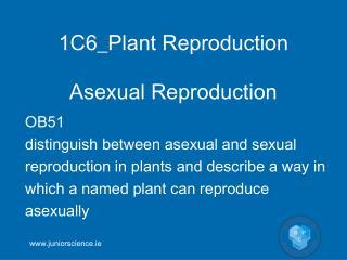 1C6_Plant Reproduction