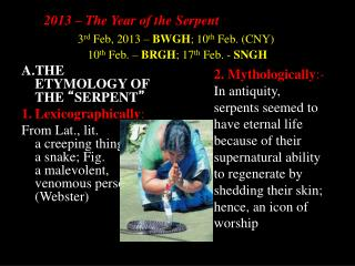 2013 – The Year of the Serpent
