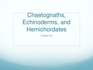 Chaetognaths, Echinoderms, and Hemichordates