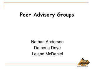 Peer Advisory Groups