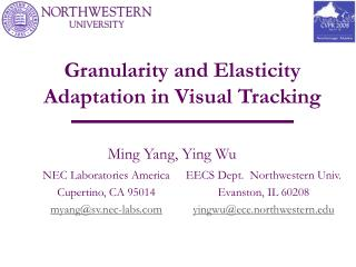 Granularity and Elasticity Adaptation in Visual Tracking