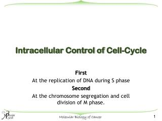 Intracellular Control of  Cell-Cycle