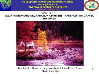 CHAPTER 17: AGGRADATION AND DEGRADATION OF RIVERS TRANSPORTING GRAVEL MIXTURES