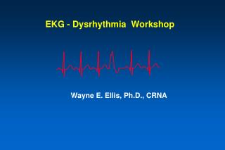 EKG - Dysrhythmia  Workshop