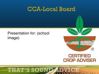CCA-Local Board