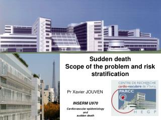 Sudden death Scope of the problem and risk stratification