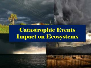 Catastrophic Events Impact on Ecosystems