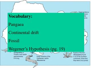 Vocabulary: Pangaea Continental drift Fossil Wegener's Hypothesis (pg. 19)