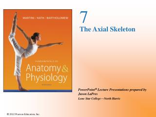 7 The Axial Skeleton