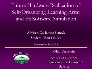 Future Hardware Realization of Self-Organizing Learning Array and Its Software Simulation