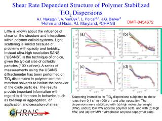 Shear Rate Dependent Structure of Polymer Stabilized TiO 2  Dispersions