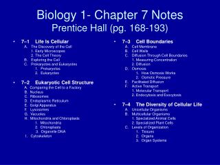 Biology 1- Chapter 7 Notes Prentice Hall (pg. 168-193)