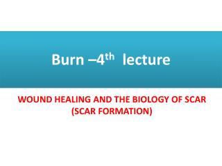 Burn –4 th lecture