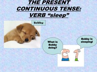 "THE PRESENT CONTINUOUS TENSE: VERB ""sleep"""