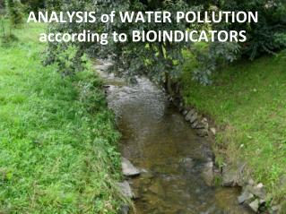 ANALYSIS of WATER POLLUTION according to BIOINDICATORS
