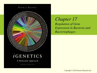 Chapter 17 Regulation of Gene Expression in Bacteria and Bacteriophages