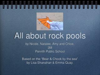All about rock pools