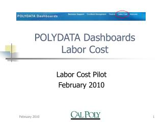POLYDATA Dashboards Labor Cost
