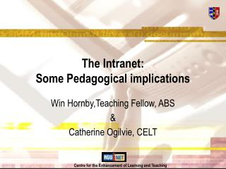 The Intranet: Some Pedagogical implications
