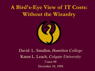 A Bird's-Eye View of IT Costs: Without the Wizardry