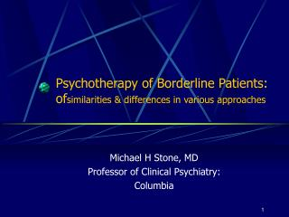 Psychotherapy of Borderline Patients:  of similarities & differences in various approaches
