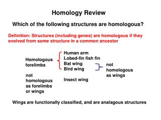 Homology Review