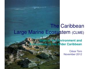 The Caribbean Large Marine Ecosystem  (CLME)