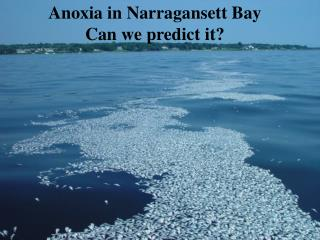 Anoxia in Narragansett Bay Can we predict it?