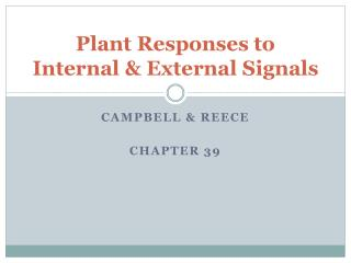 Plant Responses to Internal & External Signals